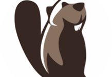 Dbeaver Database Tool