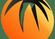 bitcomet-download-manager