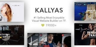 KALLYAS v4.11.1 - Creative eCommerce Multi-Purpose WordPress Theme Nulled