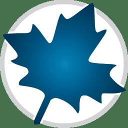 Maplesoft Maple/MapleSim 2021.0 Win/ 2019 Linux / 2018 macOS