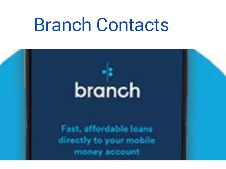 Download Branch Loan APK App