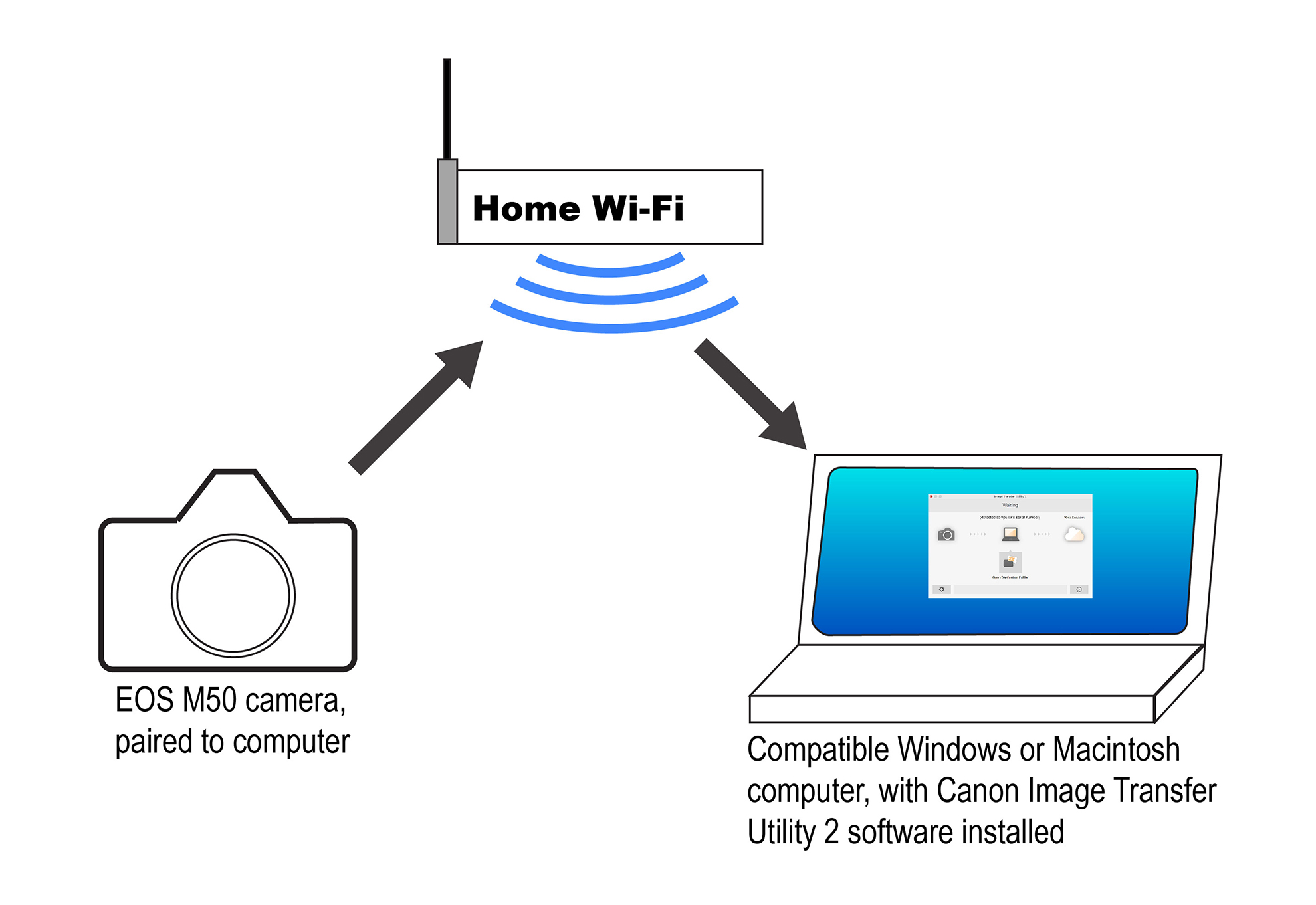 hight resolution of  diagram canon u s a inc canon eos m50 transfer images automatically on usb 2 0 wiring