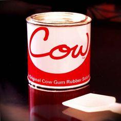 Cow Gum