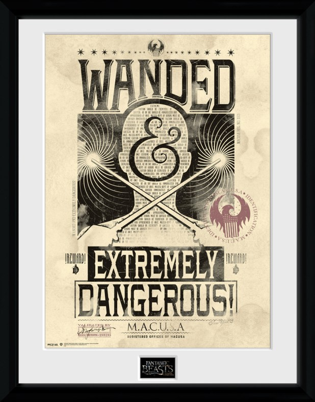 GB Posters - Fantastic Beasts Wanted Poster