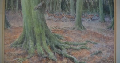 """""""Down In The Forest Something Stirred"""" by Desmond Walduck"""
