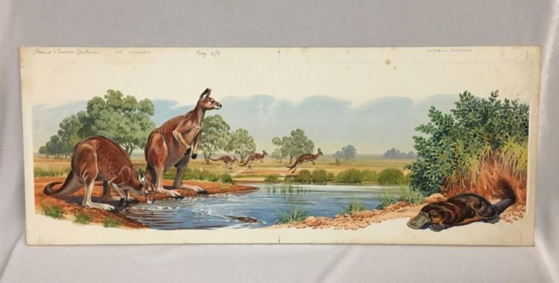 Art by Bernard Long, possibly for the book Strange and Curious Creatures offered on eBay by an Australian gallery