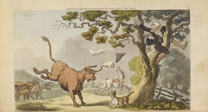 """An illustration from """"The Tour of Doctor Syntax in search of the picturesque"""""""