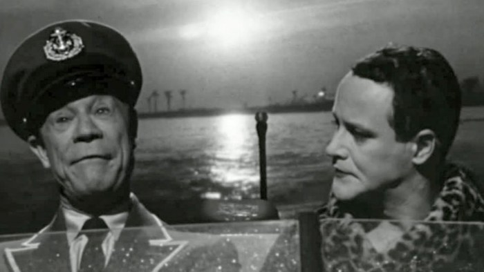 "Joe E Brown as Osgood Fielding III to Jack Lemmon as Daphne at the end of at the end of Some Like It Hot: ""Nobody's perfect"""