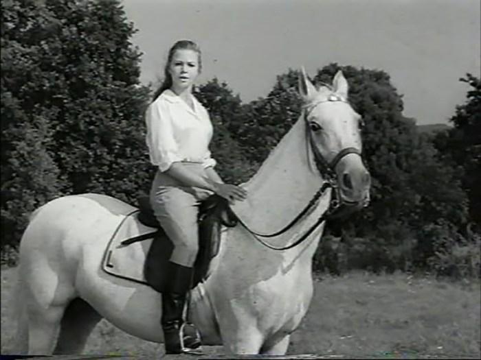 The White Horses