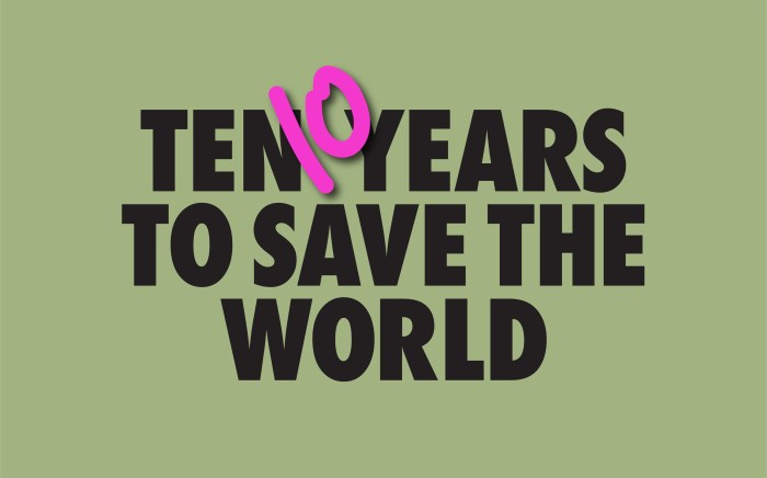 10 Years to Save the World