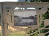 art-in-public-spaces-lady-bird-lake-11