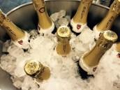 Champagne! Livin' the dream.