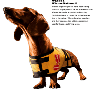 wienernationals_main