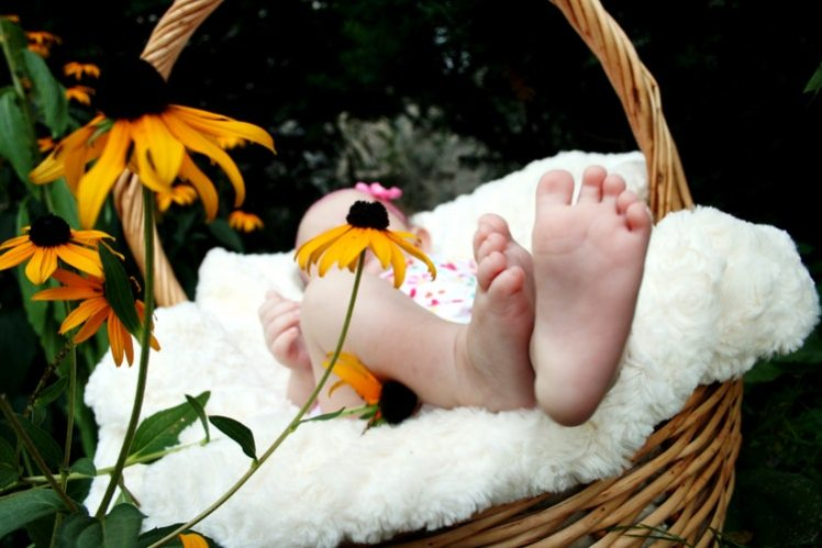 A newborn baby in a basket. A new life begins.