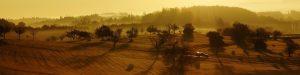 cropped doyen digital nomads 1023