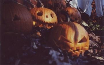 pumpkinrot4