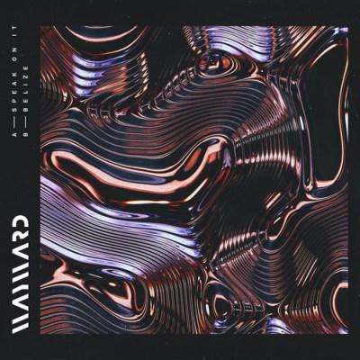 DYLTS - Wayward - Speak On It