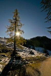 Jesus, light, the way, truth