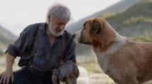 'call of wild' starring harrison