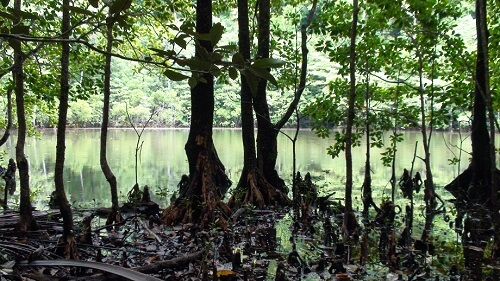 Lagune op Cadlao Island in de Bacuit Bay - El Nido, Palawan, Filipijnen