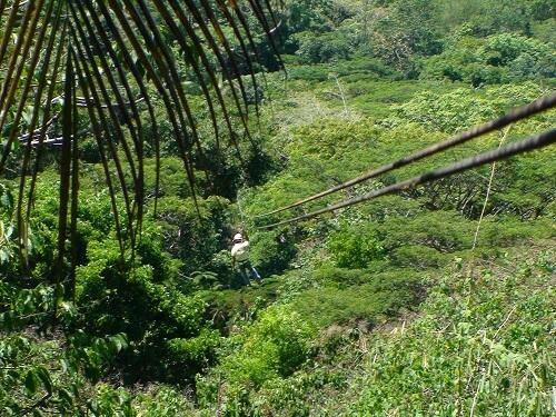 Zipline Adventure in het Irawan Eco-Park - Puerto Princesa, Palawan, Filipijnen