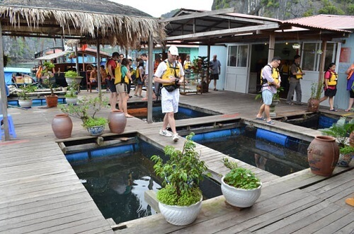 Vung Vieng Floating Village - Halong Bay, Noord Vietnam
