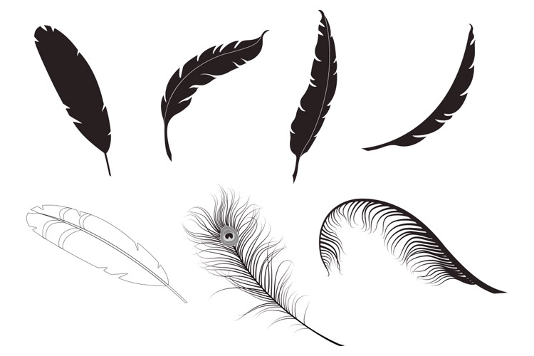 feather vector pack 1