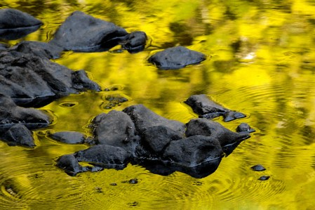 yellow-river