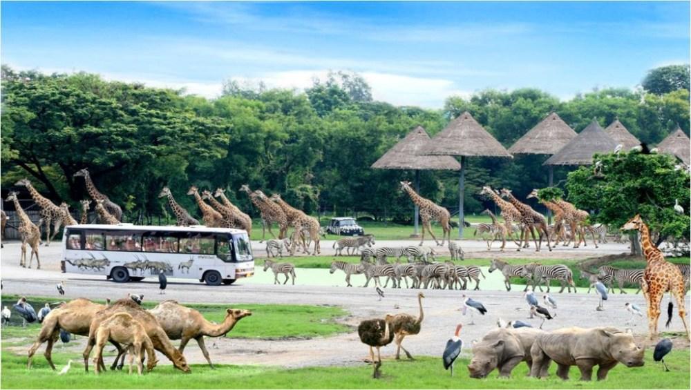 Safari World, Bangkok Attractions, Thailand