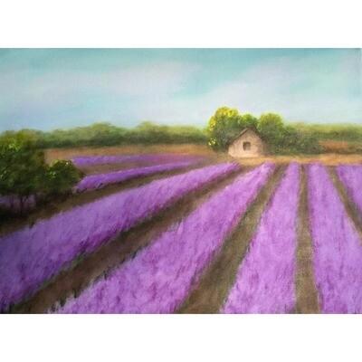 Hilda Bordianu -- Lavender Field in Province