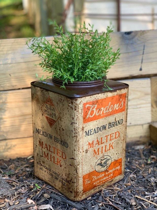 Vintage Planter, Vintage Advertising, Milk Can