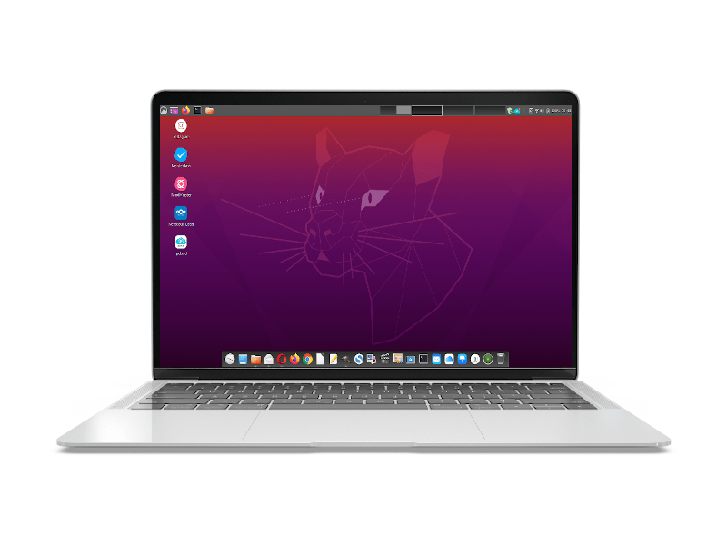 Ubuntu Cinnamon Linux Notebook