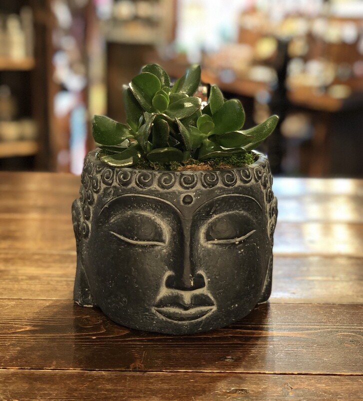Buddha Hand planter