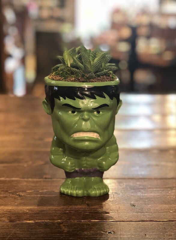 Incredible Hulk Succulent Planter