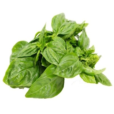 Basil - small bunch