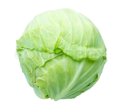 Cabbage - small each