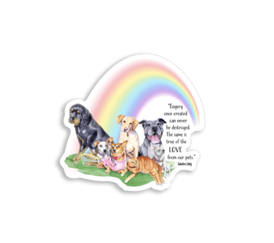 Rainbow Bridge Magnet