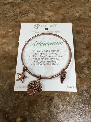 Achievement Bracelet Copper