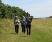 Preliminary Ecological Appraisal and Report Writing -PEA (Bristol):21st and 22nd May 2019