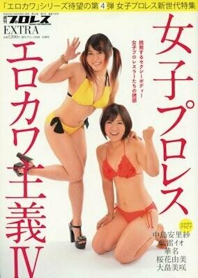 Weekly Pro Wrestling Erokawa Special Edition Vol. 4