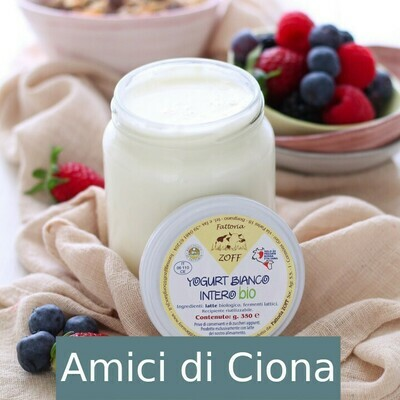 Yogurt bianco (350g)