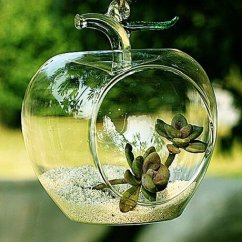 Awesome Kitchen Gadgets Showrooms Shrewsbury Apple Shaped Clear Glass Planter For Small Succulents, Air ...