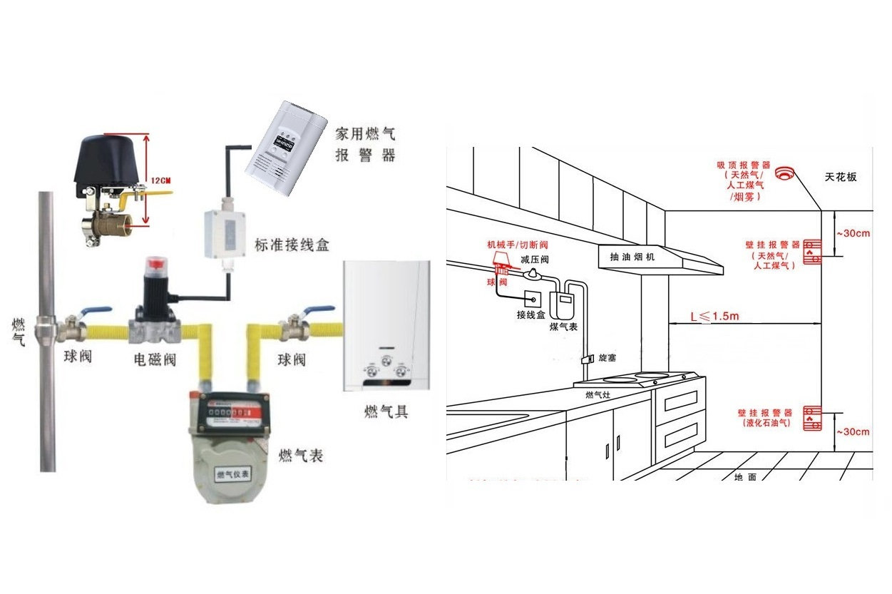 Flammable Gas Detector With Controller Solenoid Valve