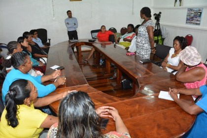 Mathilda Leon stands to make her point, during the working session of the Self Reliance and Success in Business Workshop at the Regional Democratic Council office. Mr. Johann Puran of Interweave Solutions is also pictured standing.
