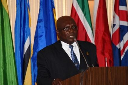 Professor Theophilus M.F. Ferguson, University of Guyana making his presentation at the Hague Conference