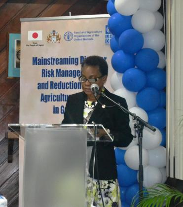 FAO's Deputy Sub-Regional Coordinator for the Caribbean, Dr. Lystra Fletcher-Paul