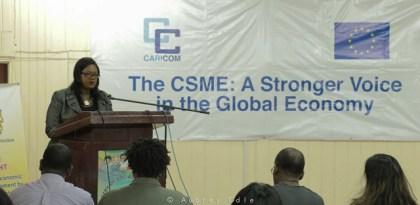 Dr. Olivia Smith-Deputy Program Manager CSME