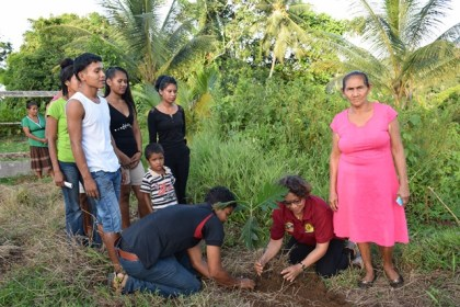 Minister within the Ministry of Indigenous Peoples Affairs Valerie Garrido-Lowe (second from right) taking part in the tree planting exercise with the some of the participants of the Hinterland Employment and Youth Service (HEYS) programme in Bumberry Hill, Region One.