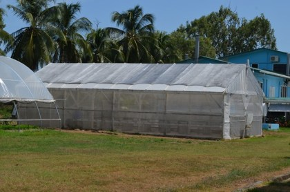 The shade house at the National Agricultural Research and Extension Institute (NAREI) used for hydroponics farming