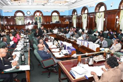 The National Assembly in session on Monday